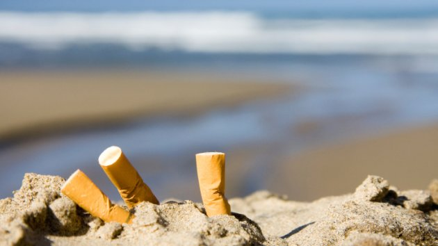 cigarette butts by the sea