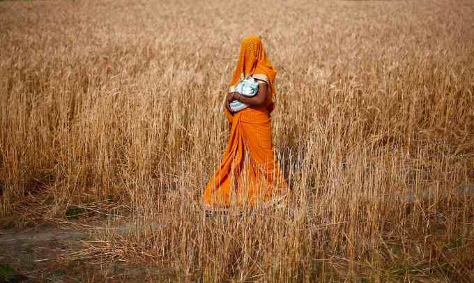 Woman carries her baby as she walks through a wheat field on her way to a polling station to cast her vote in Shabazpur Dor village