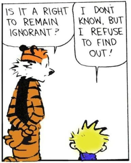 Calvin & Hobbes on learning