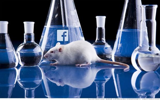 legit lab rat