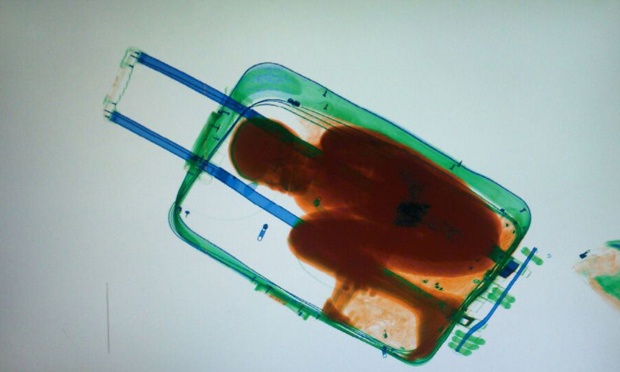 suitcase boy