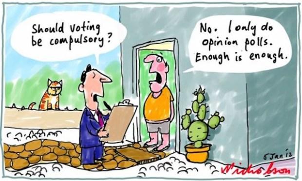voting in Oz