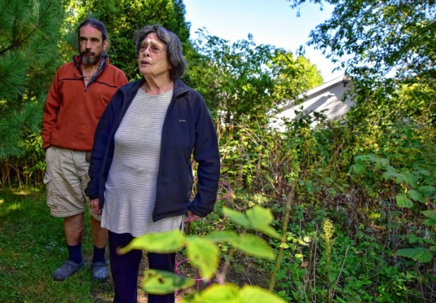 Margaret Holcomb and her son Tim Holcomb stand where Margaret's marijuana plant was seized the other day from her backyard in Amherst.